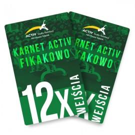 Karnet na 12 wejść